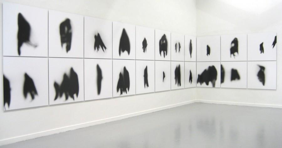 Metamorfosis de la sombra, de  Manuel Vilariño