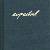 Espectral [Obras das coleccións CGAC e Fundación ARCO]