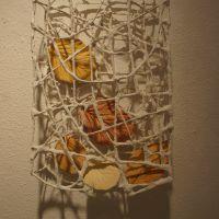 Celosía y hojas , de  María Xosé Díaz