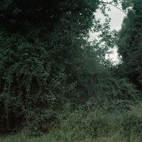 Still Life Nº III. Net & Woods I, de  Damián Ucieda