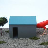 Pájaro y casa