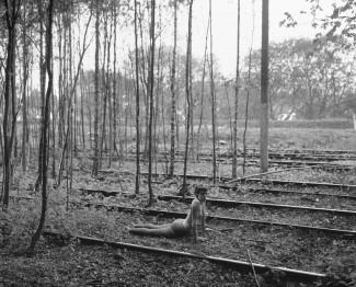 Emma (Woods & Train Rails)