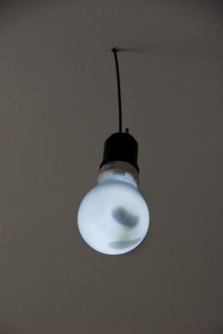 Pies de plomo (zapateado luz)